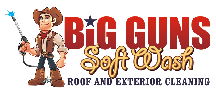 Big Guns Soft Wash